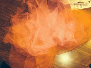 DIY:: How to Make a Tutu for $5
