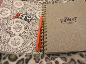 6 Things I Love About the Sadie Robertson Planner + A Giveaway!