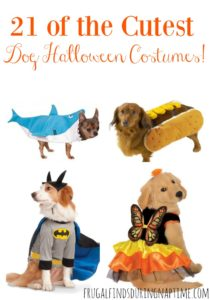 21 of the CUTEST Dog Halloween Costumes