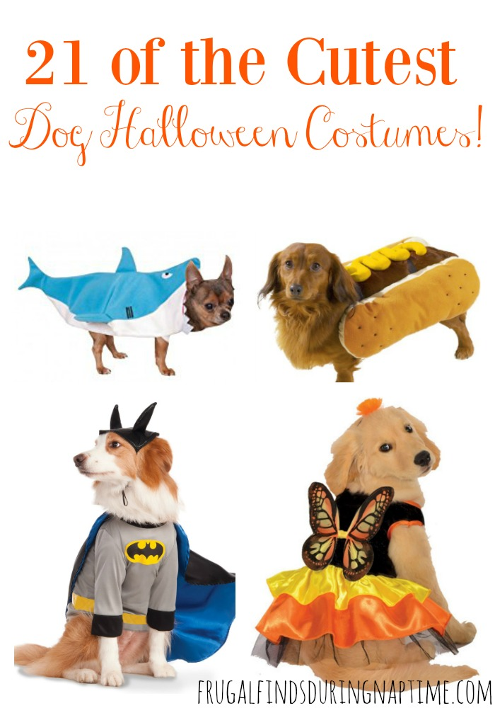 Don't leave your fur baby out of the Halloween fun! Here are 21 of the cutest Dog Halloween Costumes!