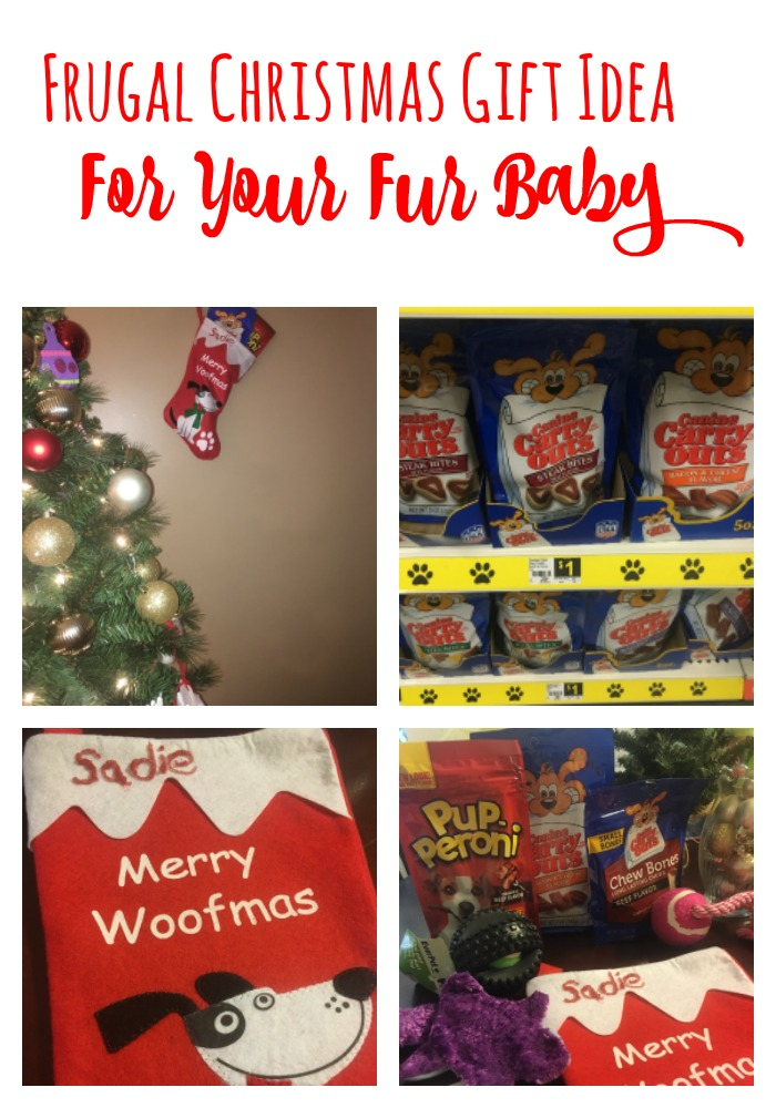 If you have a fur baby, you don't want to forget them this Christmas! Check out this frugal gift idea that will make both your pup and checkbook happy!