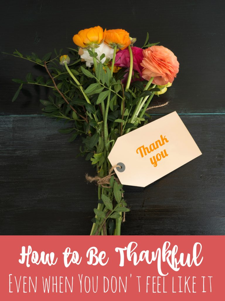 With the busyness of the holiday, it's easy to get overwhelmed and forget what you have to be thankful for.