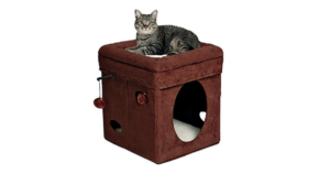 Curious Cat Cube/House ONLY $26.91 (reg. $44.99)!