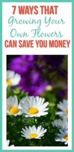 7 Ways Growing Your Own Flowers Saves You Money